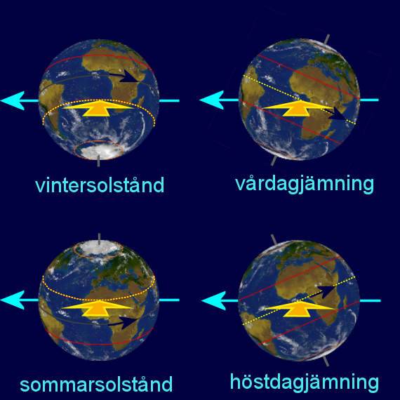 Jorden sedd från solen vid vinter- och sommarsolstånd, samt vårdag- och höstdagjämning