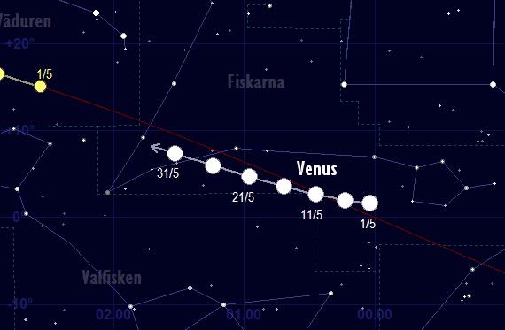 Venus skenbara färd framför stjärnhimlen i maj 2017