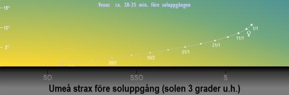 Venus position på himlen strax före soluppgången när solen befinner sig 3 grader under horisonten i början på 2019 (sedd från Umeå)
