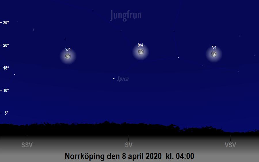 Månen nära Spica den 8 april 2020 kl. 04:00 sedd från Norrköping