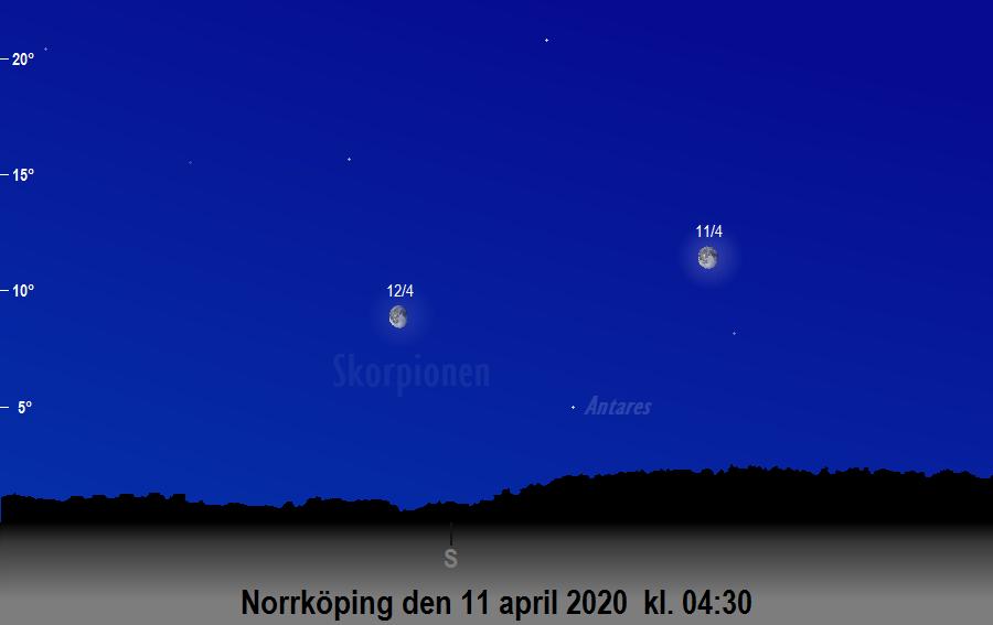 Månen nära Antares den 11 april 2020 kl. 04:30 sedd från Norrköping