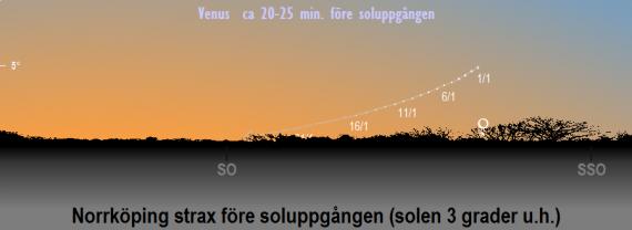 Venus position på himlen när solen befinner sig 3 grader under horisonten (ca 20-25 minuter före soluppgången) i januari 2021 (sedd från Norrköpings breddgrad, 58,6°n)