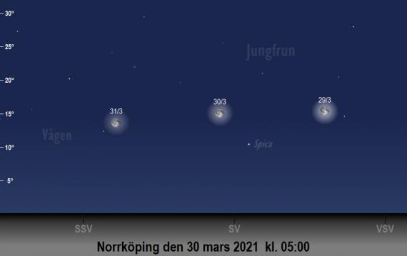 Månen och Spicas position på himlen runt den 30 mars 2021 kl. 05:00 (sedd från Norrköping)